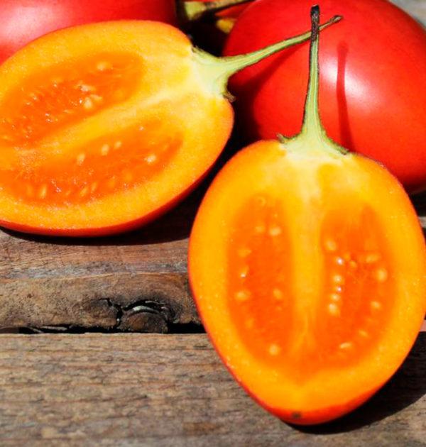 tomate-de-arbol-1